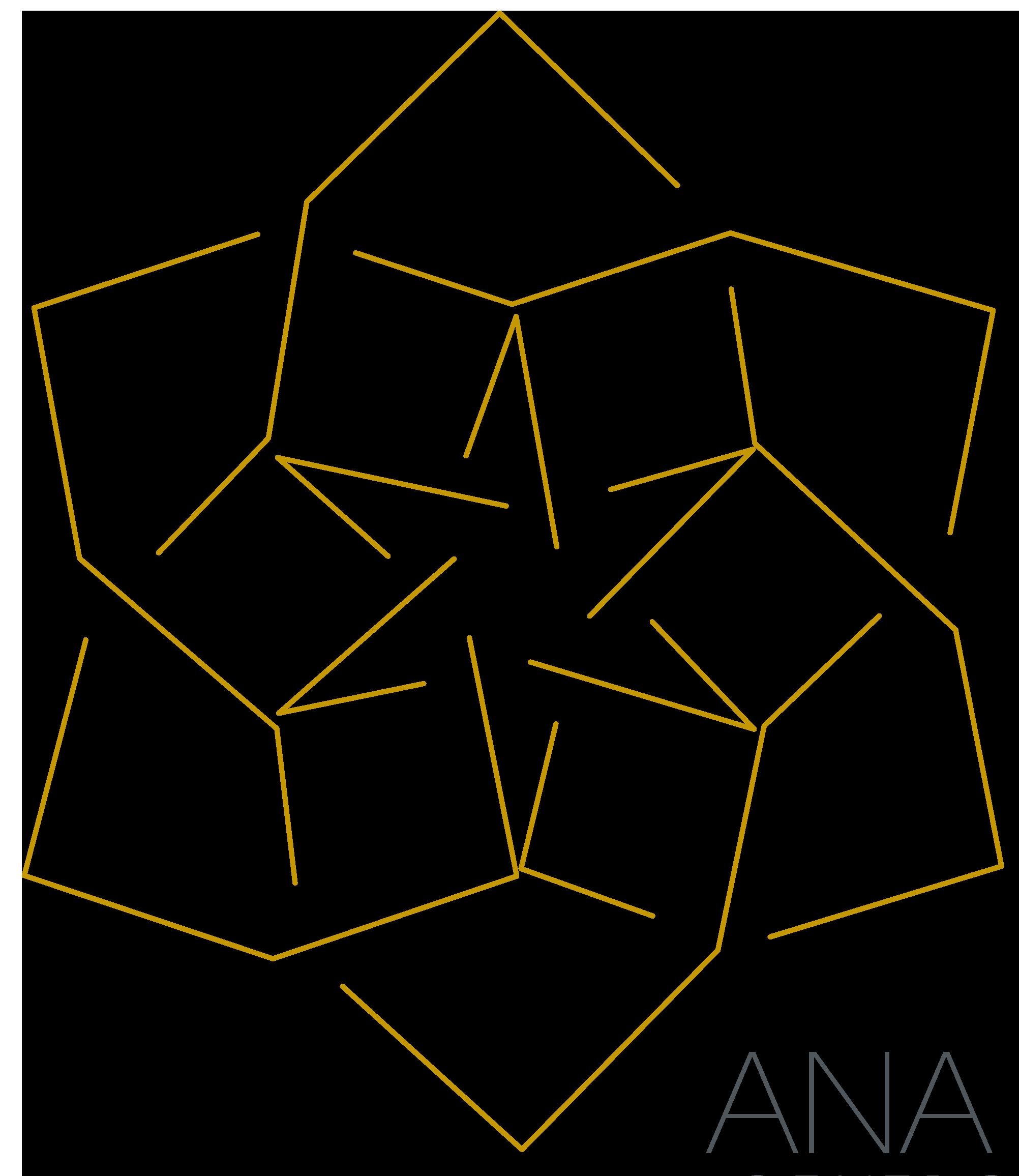 logo_ana_santos
